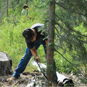 Cleaning Up Elk Country